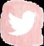 twitter icon_edit